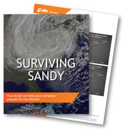 surviving_sandy___cover